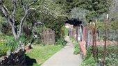 Robson garden