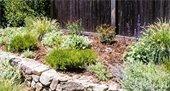 Fire-smart landscaping