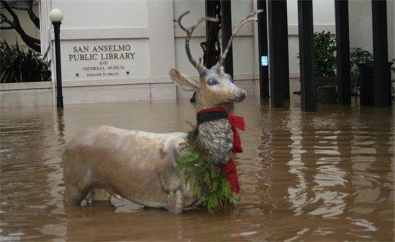 sugarfoot flood