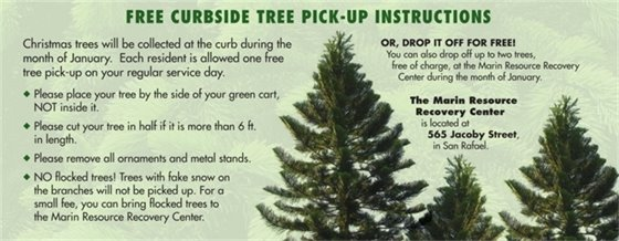 MSS Tree Recycle Information